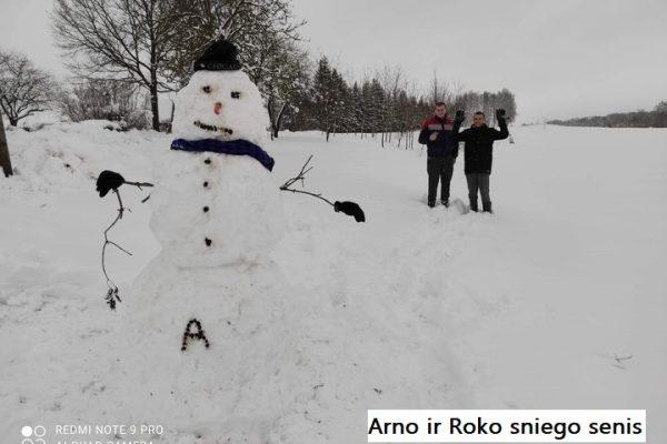 Arno ir Roko sniego senis 166 balsas